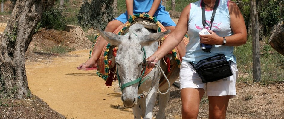 EXPERIENCIAS EN TERRA NATURA Magic Natura Animal, Waterpark Resort Benidorm